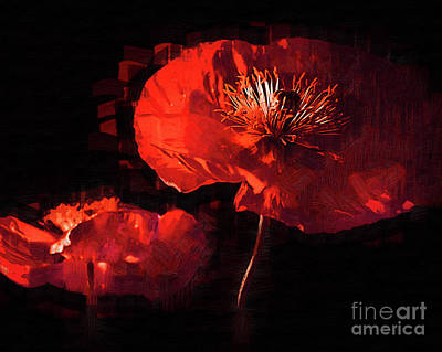 Digital Art - Two Red Poppies by Kirt Tisdale