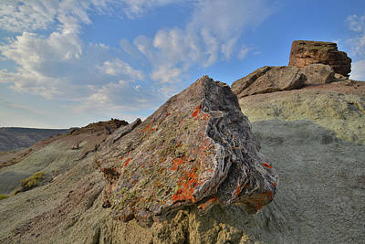 Mannequin Dresses - Red Rock Valley Boulders by Ray Mathis