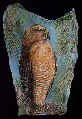 Painting - Red Shouldered Hawk by Nancy Lauby