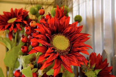 Red Sunflower Art Print by Floyd Snyder