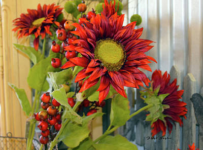 Red Sunflower Large Art Print by Floyd Snyder