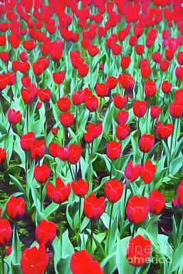 Impressionism Photos - Red tulips by Sheila Smart Fine Art Photography