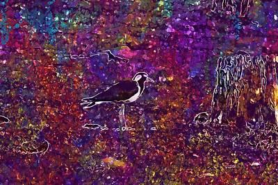 Lapwing Digital Art - Red Wattled Lapwing Vanellus Indicus  by PixBreak Art
