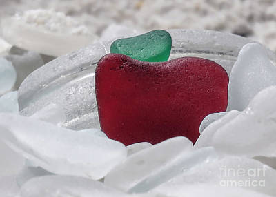 Photograph - Sea Glass In Red White And Green  by Janice Drew