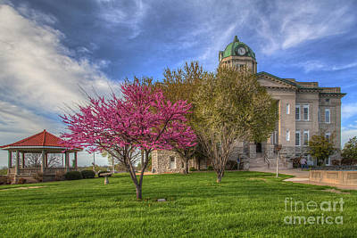 Redbud At The Courthouse  Print by Larry Braun