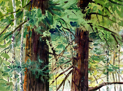 Painting - Redwoods by Donald Maier
