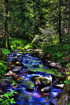 Reeder Creek 2 Art Print by David Patterson