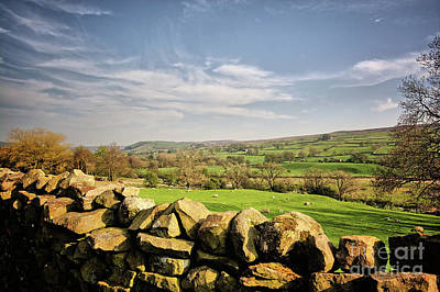 Reeth Views Art Print