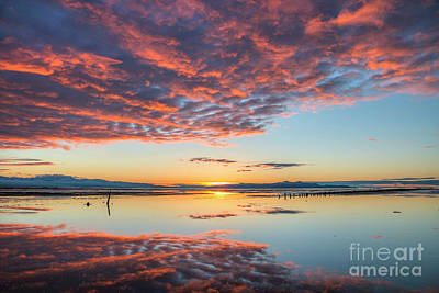 Photograph - Reflected Sunset by Spencer Baugh