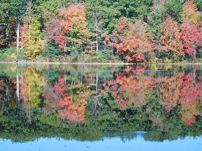 Photograph - Reflection On Eames Pond by Catherine Gagne