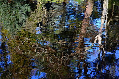 Photograph - Reflections In A Pond 2 by Theresa Pausch