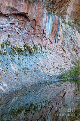 Art Print featuring the photograph Reflections In Oak Creek Canyon by Sandra Bronstein