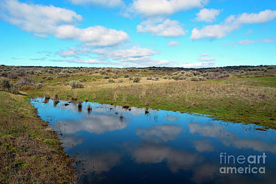 Art Print featuring the photograph Reflections Of Spring by Mike Dawson