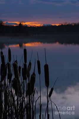 Photograph - Refuge Sunset by Nicki McManus