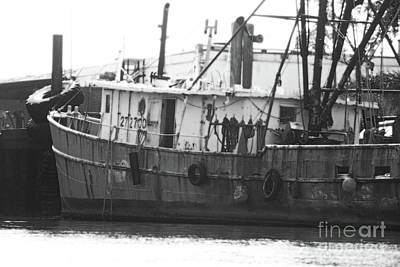 Photograph - Resting In Port by Mary Haber