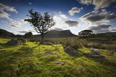 Photograph - Rhyd Ddu, Snowdonia, Wales by Richard Wiggins