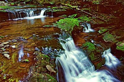 Photograph - Ricketts Glen Falls 006 by Scott McAllister
