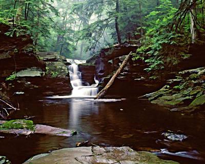 Photograph - Ricketts Glen Falls 016a by Scott McAllister
