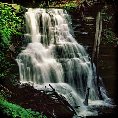 Photograph - Ricketts Glen Falls 025 by Scott McAllister