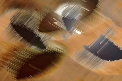Photograph - Rings Of Gold by Deborah Hughes