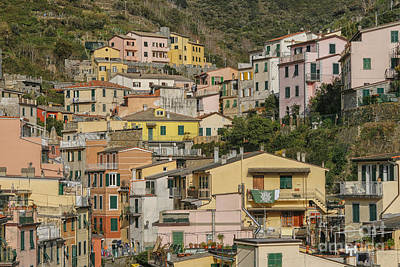 Photograph - Riomaggiore In Close Up by Patricia Hofmeester