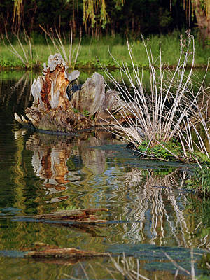 Photograph - Rippled Reflections by Kathleen Stephens