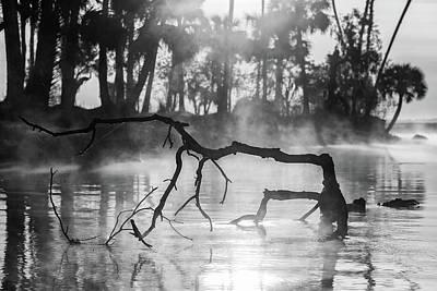 Photograph - River Sculpture by Stefan Mazzola