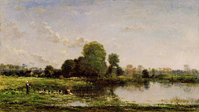 Wood Duck Painting - Riverbank With Fowl by Charles-Francois Daubigny