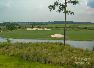 Photograph - Rivertowne Country Club Golf Course by Dale Powell