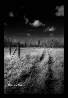 Heather Rivet Photograph - Road Less Travelled by Heather  Rivet