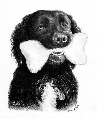 Black Labrador Drawing - Rockie  by Andrew Read