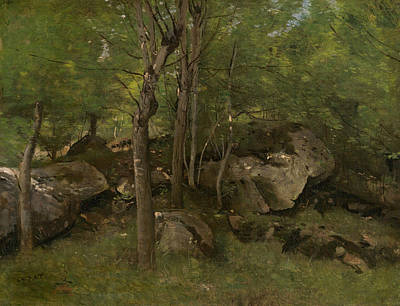 Painting - Rocks In The Forest Of Fontainebleau  by Jean-Baptiste-Camille Corot