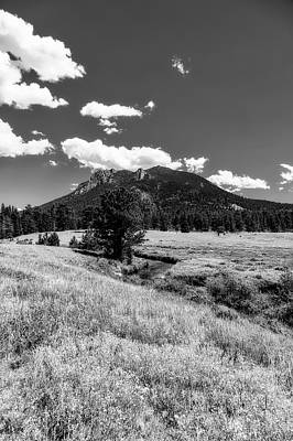 Photograph - Rocky Mountain Meadow by L O C