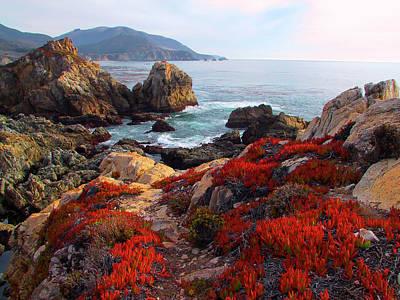Photograph - Rocky Point by Tom Kidd