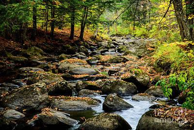 Photograph - Rocky Stream by Alana Ranney