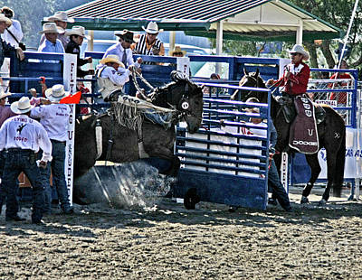 Photograph - Rodeo 8 by Tom Griffithe