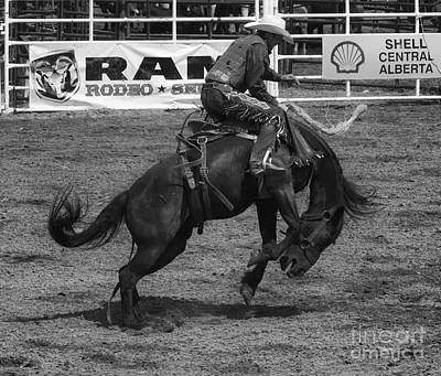 Rodeo Saddleback Riding 5 Art Print by Bob Christopher