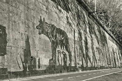 Photograph - Rome's History by JAMART Photography