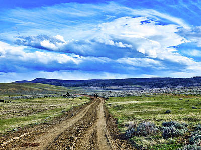 Photograph - Room To Roam - Wyoming by L O C