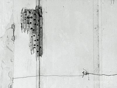 Photograph - Rooms To Let by Joe Jake Pratt