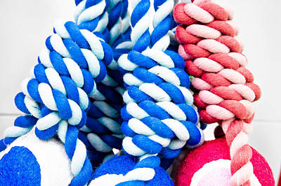 Entwined Photograph - Rope Toys by Tom Gowanlock