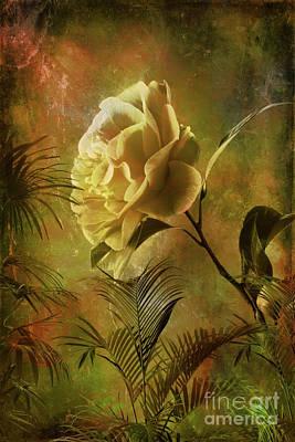 Rose Art Print by Andrzej Szczerski
