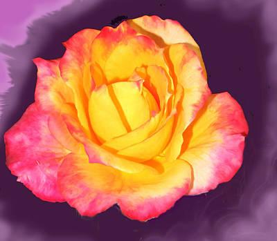Digital Art - Rose Explosion by Ian  MacDonald