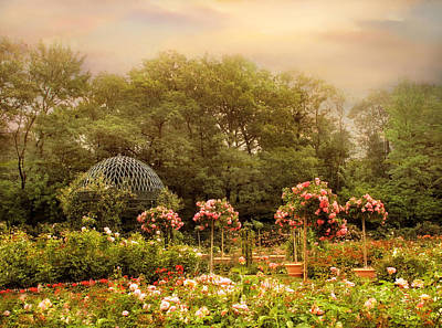 Photograph - Rose Garden by Jessica Jenney