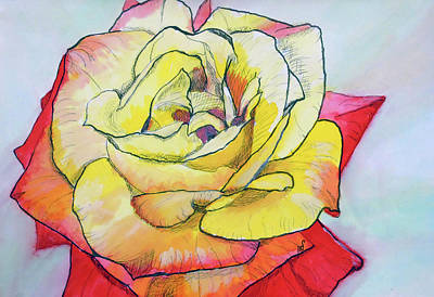 Flower In Pen And Ink Drawing - Rose by Maria Woithofer