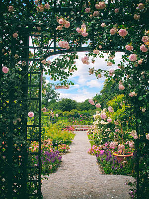 Greenery Digital Art - Rose Pergola by Jessica Jenney