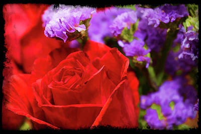 Photograph - Roses Are Red by Ricky Barnard