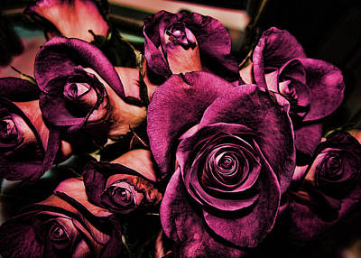Digital Art - Roses by Cathy Harper