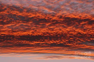 Rosy Sky Art Print by Michal Boubin