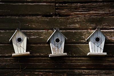 Photograph - Row Houses by Inge Riis McDonald